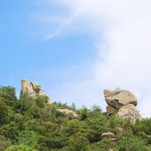 上蒲刈 七国見山中腹からの風景 3/5
