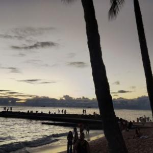 2019 Hawaii diary~一人でも楽しいジャムづくり~