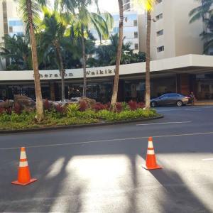 2019 Hawaii diary~シェラトンワイキキホテル #1548~