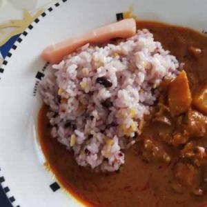 マレーシア料理レトルトを試してみた