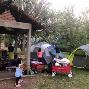 キャンプ 本番。