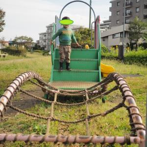 ★子供撮りカメラ、私の作例写真集:2019年10月(オリンパスE-M10mark3+17mmF1.8/45mmF1.8)
