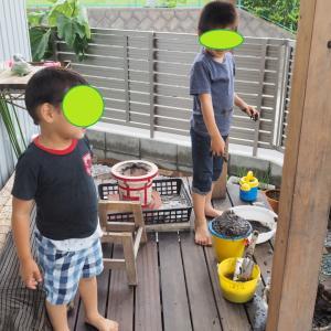 ★子供撮りカメラ、私の作例写真集:2020年7月(オリンパスE-M10mark3+17mmF1.8)