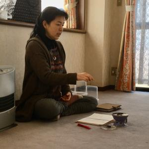 新年第1回目の瞑想会