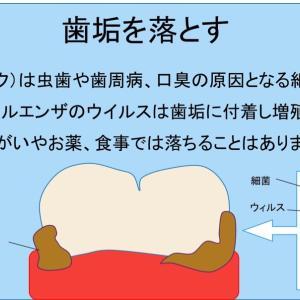 歯磨きは風邪、インフルエンザの予防に効果あり!