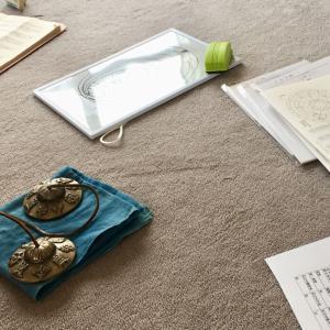 4月のyoyoベジランチ付き瞑想会