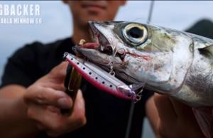 魚種も場所もノーリミット 新発売 ビッグバッカージャコナブラミノー