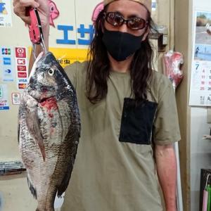 黒鯛49cm釣れました!