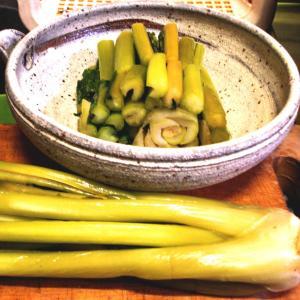 冬期限定 元祖べっこう野沢菜漬出荷始まりました。