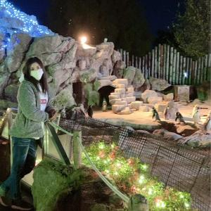 #メリーゴーランド (o^^o)#東武動物公園#イルミネーション