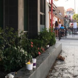 レストラン街の散歩は・・・