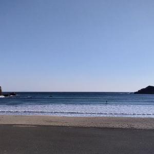 弓ヶ浜の海鮮丼