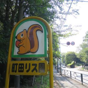 町田リス園 ♪