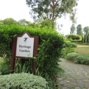 世界遺産 ボタニックガーデン Heritage Garden と Swan Lake