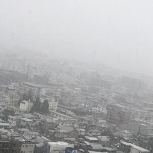 朝7時 雨が雪にかわりました @神奈川県北部