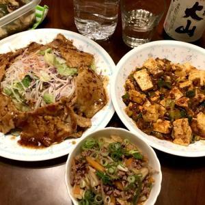 晩ごはん*麻婆豆腐が辛すぎた。