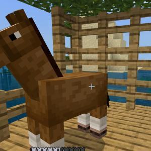 マイクラその後★やんちゃな馬