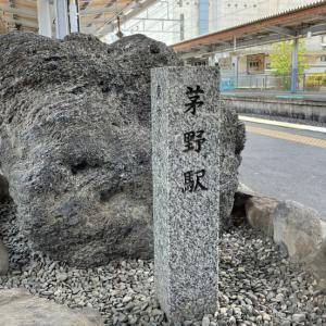 茅野駅の「ツバメ団地」がすごい!