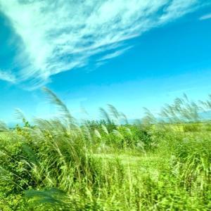 只見線【黙鉄の旅】9/7 会津若松~会津川口 往復しました。