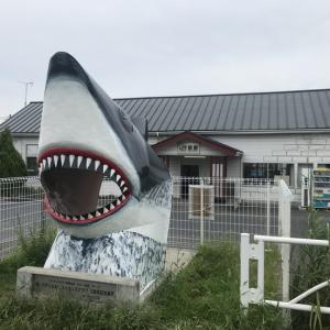 【5日目なう】鮫駅のサメ!