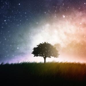 【その後】前世と使命を知る旅☆占星術・神社セッション【合体セミナー】