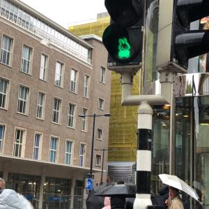世界で唯一のミッフィの信号機