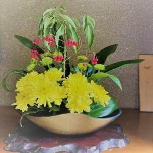 万両・万年青・黄色スプレー菊・緑色スプレー菊