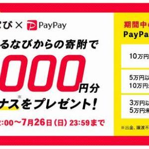 ふるなびで最大1万円のペイペイ残高還元キャンペーン!