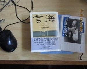 「言葉の海へ」高田宏、これは≪言海≫という辞書をつくった大槻文彦の伝記である。