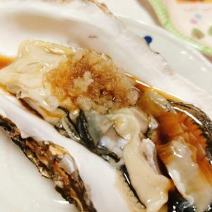 大きな牡蠣とホタテで家飲み〜