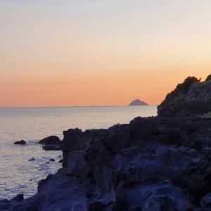 今年4度目の済州島へ ④