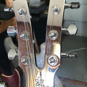 新スライドギター2
