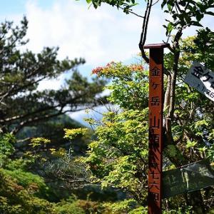 「金ヶ岳~茅ヶ岳」2020/06/20