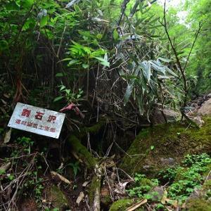 「大岳~呼子岳」2019/6/2