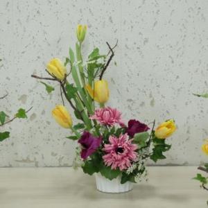 今年一発目の花