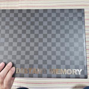 DISTANT MEMORYドールお迎え!