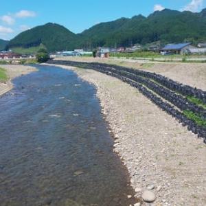 台風19号(令和元年東日本台風)現地調査