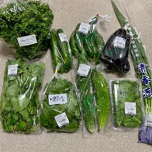 朝採れ野菜で、幸せご飯。