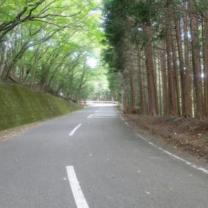 【富士川下って】二泊三日の自転車旅行-02【興津まで】