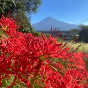 【薩埵峠で】富士五湖巡り-01【ご来光】