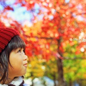 秋写真。。。