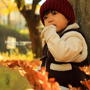 秋模様。。。