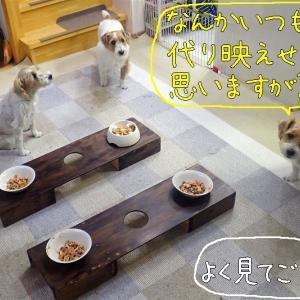 誕生日の晩御飯