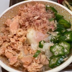 すき家で朝食!鮭のっけ朝食@すき家(豊橋)