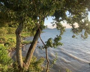 夕方の琵琶湖へ