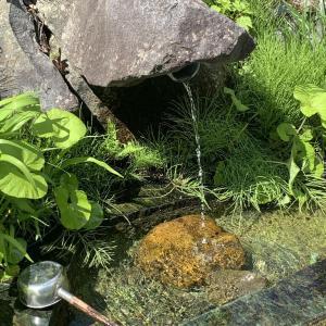 宮古の聖水 夢見の水 2021.5.11