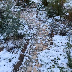 初雪降りました!