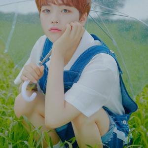 個人的イメージによるX1メンバー紹介⑩ ソン・ヒョンジュン