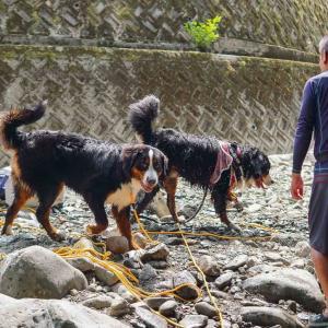 犬鳴山で川遊びしてきたよ~~~♪