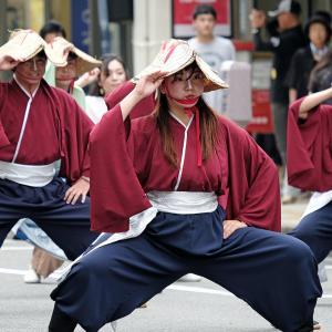新潟総踊り(完)(万代)